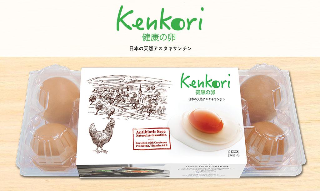 kenkori-d2main