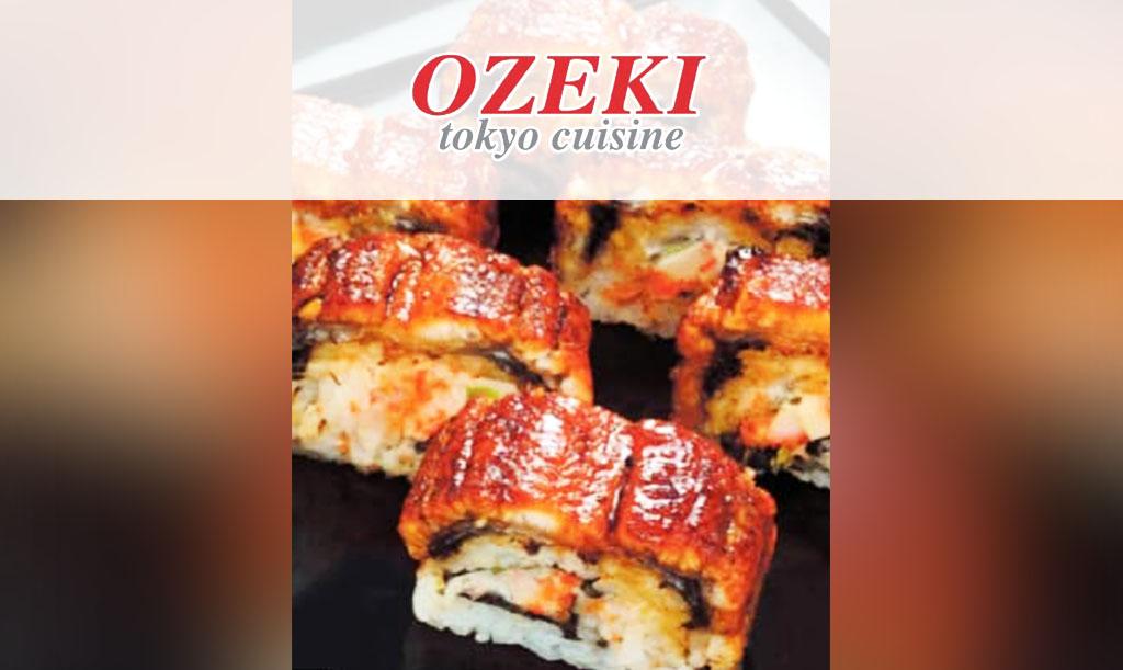 ozeki-d2main6