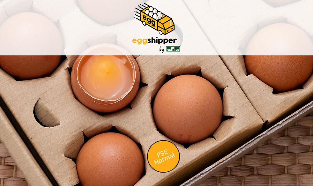 eggshipper-d2main1