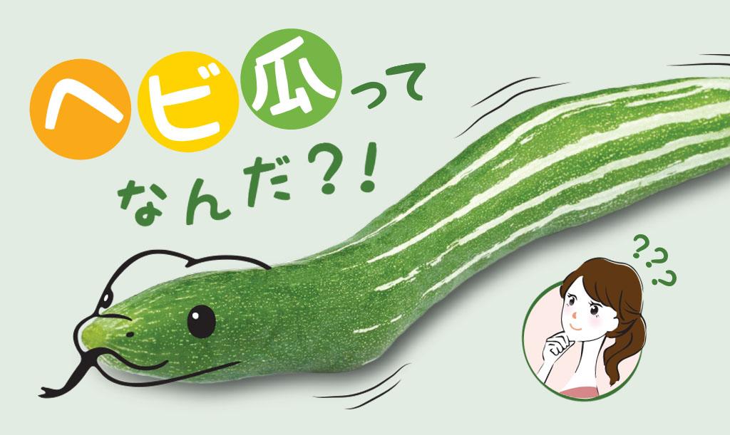 snake-gourd-main