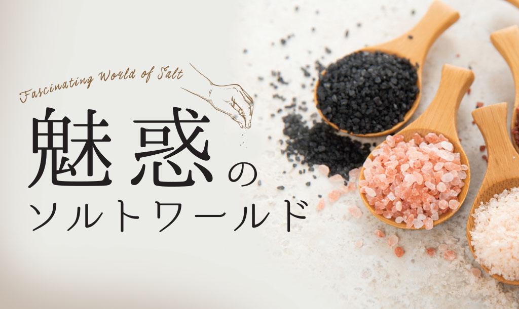 salt-main