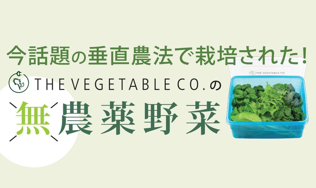 vegetableco-main